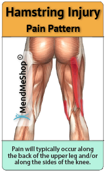 hamstring pain radiates down the back of the upper leg and sometimes the knee.